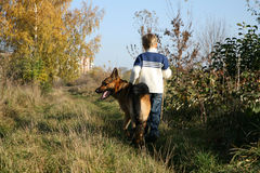 Little boy and big dog (German Shepherd ). Little boy on the walk with the big, obedient dog on suburb of the city Royalty Free Stock Photo