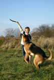 Little boy and big dog (German Shepherd ). The little boy is training the big dog German Shepherd Dog ). The obedience and the cooperation Royalty Free Stock Images