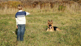 Little boy and big dog (German Shepherd ). The little boy is training the big dog German Shepherd Dog ). The obedience and the cooperation Stock Images