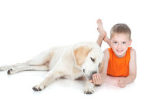 Little boy with a big dog. Smiling little boy lying with his white dog over white Stock Photos