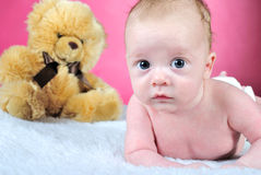 The little boy with the big eyes. Naked a pink background with a bear Stock Image