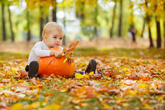 Little  boy with big orange pumpkin in hands sitting on the gras Stock Images