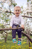 Little boy blond in a white shirt and blue pants sitting on flowered tree Royalty Free Stock Images