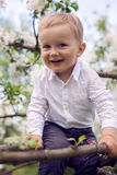 Little boy blond in a white shirt and blue pants sitting on flowered tree Stock Photos