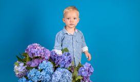 Little boy at blooming flower. Childrens day. Small baby boy. New life concept. Spring holiday. Summer. Mothers or. Womens day. Spring flowers. Childhood stock photo