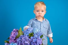 Little boy at blooming flower. Childrens day. Small baby boy. New life concept. Spring holiday. Summer. Mothers or. Womens day. Spring flowers. Childhood royalty free stock image