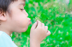 Little boy blow flower floating to the air in the garden Royalty Free Stock Photo