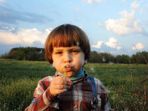 Little boy blowing dandelion on blue sky backgroun. Little boy blowing dandelion in the rays of the setting sun. Boy on blue sky background Royalty Free Stock Images