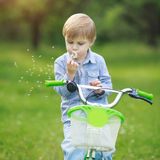 Little boy is blowing dandelion. Sitting on a green bicycle Stock Photos
