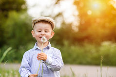 Little boy blowing dandelion. Sunny summer. Cute little boy in blue shirt blowing dandelion. Green sunny summer nature Royalty Free Stock Photos