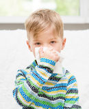 Little boy blowing his nose Royalty Free Stock Images