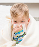 Little boy blowing his nose Stock Image