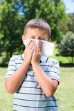 Little boy blowing his nose Stock Images