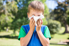 Little boy blowing his nose Stock Photography