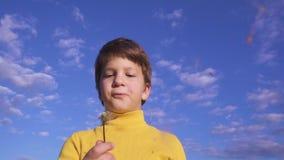 Little boy blowing up the dandelion stock video footage
