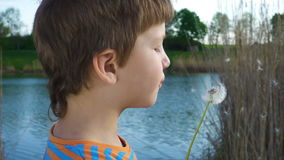 Little boy blowing up the dandelion seeds, outdoors. Slow motion 250 fps stock video footage
