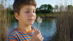 Little boy blowing up the dandelion seeds in rural landscape. Slow motion 250 fps stock footage