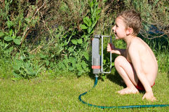 Little boy blows up the lawn Royalty Free Stock Photo