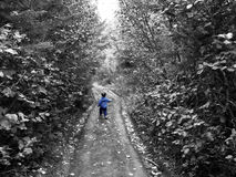 Little Boy Blue. Little Boy Dressed in Blue walking in woods photo has all color desaturate but blue royalty free stock photos