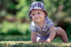 Little boy in blue checkered clothes crawling on the green grass stock photography