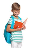 Little boy with books Stock Images