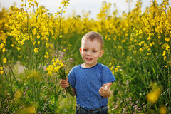 Little boy with a bouquet of flowers is in the yellow flowering Royalty Free Stock Images