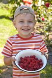 Little boy with bowl of raspberry Stock Photos