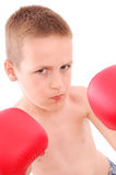 Little boy boxer Stock Photos