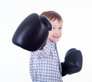 Little boy boxer. On the white background Stock Images