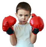 Little boy boxer. On a white background Royalty Free Stock Photo
