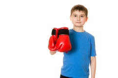 Little boy in boxing gloves on a white background Stock Images