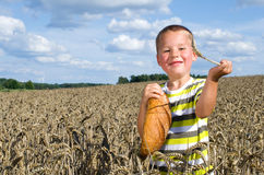 Little boy with a bread in a cornfield Stock Photography