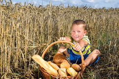 Little boy with bread in a filefd of cereals Stock Images
