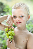 Little boy with brush of grapes Stock Photo