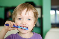 Little boy brushing teeth Stock Photography