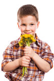 Little boy with bunch of dandelions Stock Photos