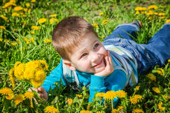 Little boy with bunch of dandelions on green field Royalty Free Stock Photo
