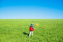 Little boy with a butterfly net in hand runs across the green field. royalty free stock photos