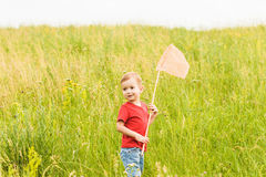 Little boy with a butterfly net on a summer meadow Royalty Free Stock Images