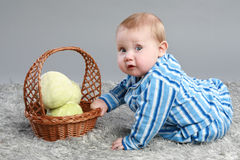 Little boy with cabbage Stock Image