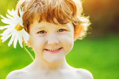 Little boy with camomile in his hair in summer park. Stock Image