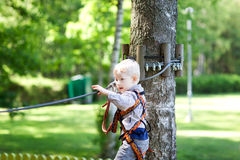 Little boy at a canopy tour Royalty Free Stock Images