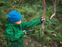 Little boy in a cap and jacket handsaw sawing dry snag Royalty Free Stock Photo