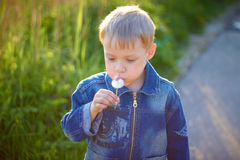 Little boy in cap playing outdoors in summer on a Sunny warm day, grass, greens, nature Stock Image