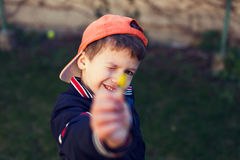 Little boy in cap showing yellow flower Stock Photos