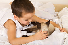 Little boy caressing his kitten in bed Stock Images
