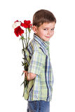 Little boy with carnations. Little boy hiding the bouquet of carnations, isolated on white Royalty Free Stock Photo