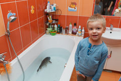 Little boy and carp in the bathtub. Royalty Free Stock Images