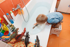 Little boy and carp in the bathtub. Stock Image