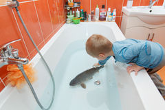 Little boy and carp in the bathtub. Stock Photography